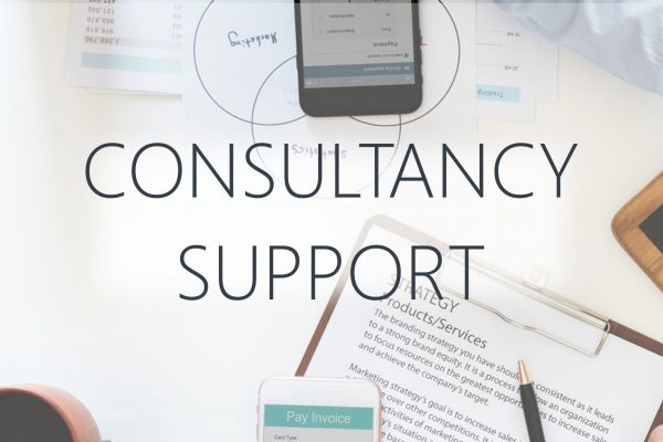 Consultancy Support