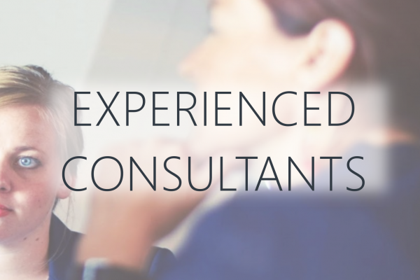 Experienced Consultants